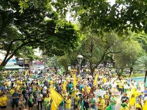 Manifestantes pedem impeachment de Dilma em Uberlândia (Foto: Caroline Aleixo/G1)