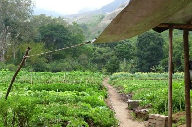 Agora em Petrpolis, a horta orgnica de Correas: apesar de rstica, tambm  magnfica (Foto: Reproduo/ 40 Forever)