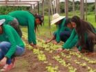 Instituto de educação rural abre inscrições para 300 vagas em RO