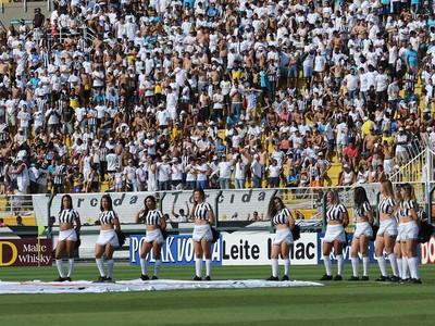 Torcida do Santos no Pacaembu (Foto: Ivan Storti/Santos FC)