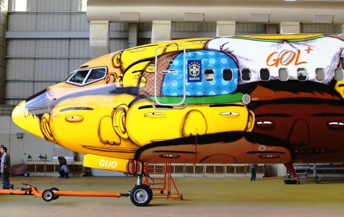 Avião da Seleção (Foto: Divulgação)