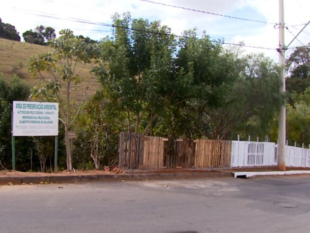 Depósito de lixo virou área de preservação ambiental após ação de aposentado em Varginha (Foto: Reprodução EPTV)