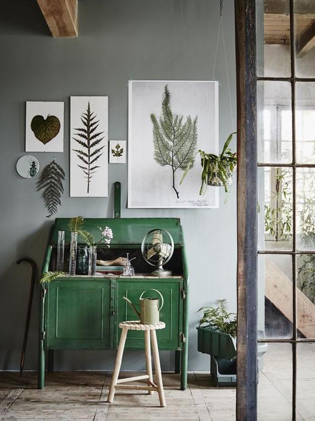Tend ncia plantas secas e prints bot nicas no d cor - Wandfarbe esszimmer ...