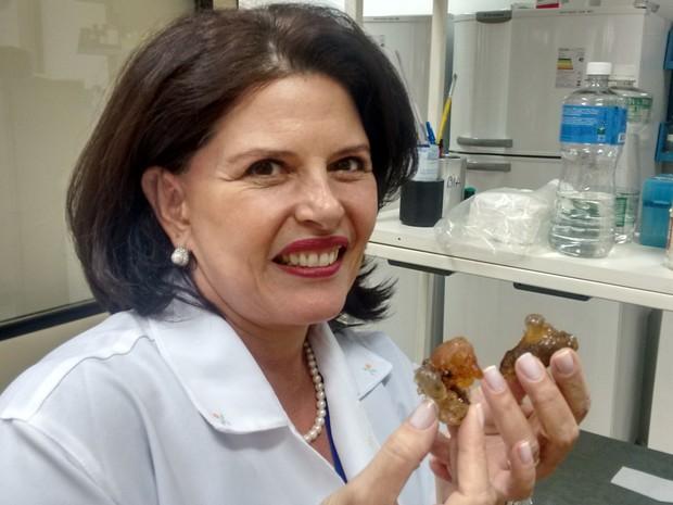 Usando resina de cajueiro, pesquisa da UFG cria plástico biodegradável em Goiás (Foto: Sílvio Túlio/G1)