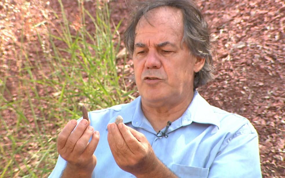 Engenheiro Marco Antônio Cornetti mostra os coprólitos, fezes fossilizadas de animais marinhos, encontradas em Santa Rosa de Viterbo, SP (Foto: Maurício Glauco/EPTV)