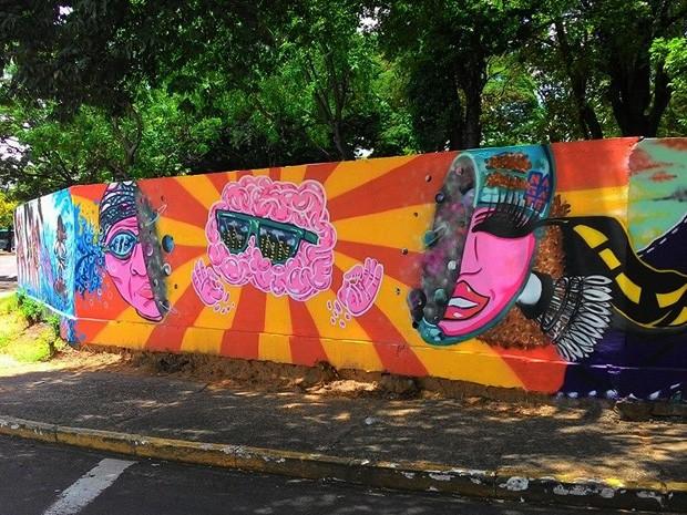 Muro da Unesp, em Presidente Prudente, também leva a arte de Fábio Nagate (Foto: Fábio Nagate/ Arquivo Pessoal)