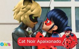Cat Noir Apaixonado