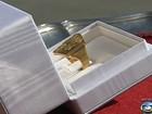 Papa recebe o anel do pescador (Reprodução Globo News)