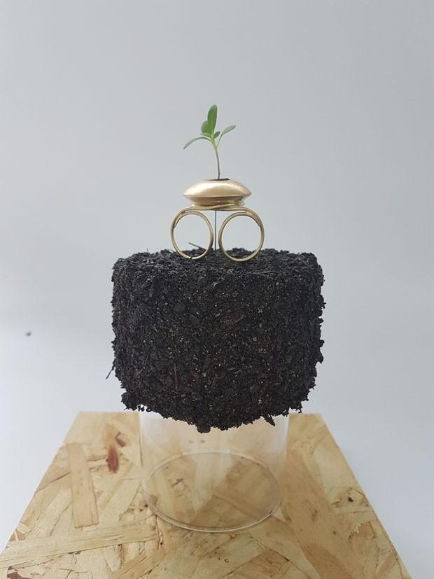 Designers brasileiros criam anel sementeira que geram mudas de verdade (Foto: Divulgação)