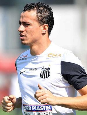 Leandro Damião, atacante do Santos (Foto: Ivan Storti / Santos FC)
