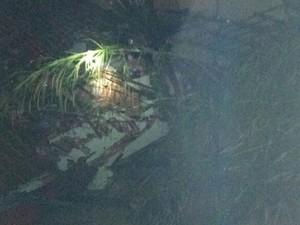 Terra caiu sobre telhado após deslizamento (Foto: Corpo de Bombeiros/Divulgação)