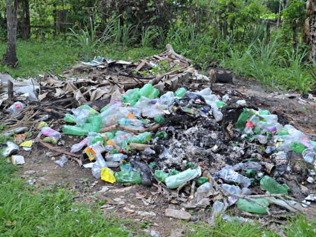 Voluntário começou a juntar garrafas PET em local da chácara para evitar proliferação de doenças (Foto: Aline Nascimento/G1)