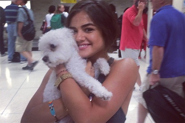 Lucy Hale, a Aria da série 'Pretty Little Liars', ganhou o cachorrinho Jack no Natal e o adora. Ele tem até uma conta no Twitter, olha lá: @JackyyHale (Foto: Reprodução/Instagram)
