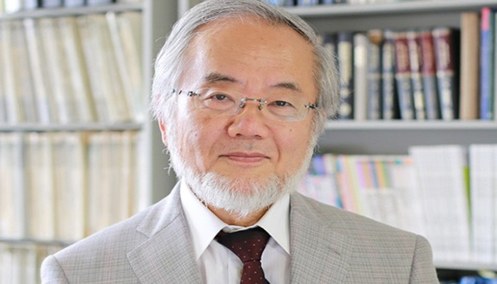 Yoshinori Osumi (Foto: Wikimedia Commons)