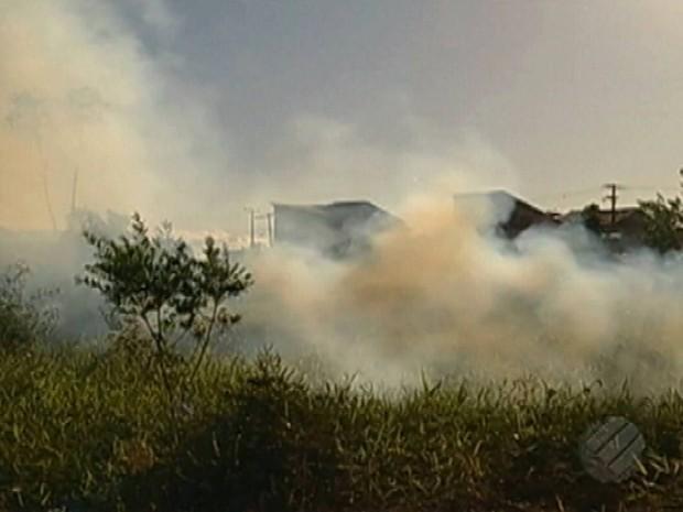 Pará registra 89 focos de queimadas durante semana do mês de junho (Foto: Reprodução/TV Liberal)