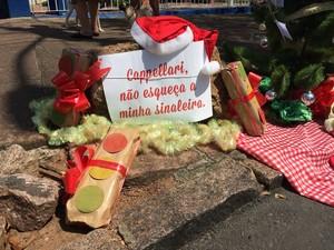 Manifestantes pediam como presente de Natal sinaleira (Foto: Laura Schenkel/Divulgação)