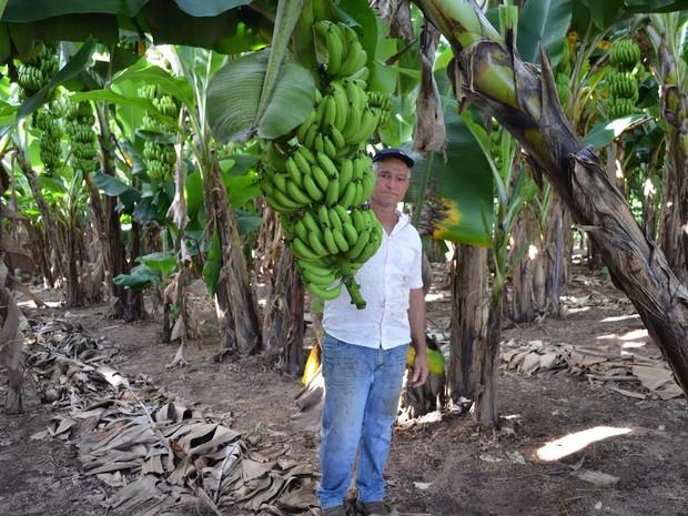 A propriedade de Jorge Eller, 53 anos, está localizada na divisa dos municípios de Cacoal e Ministro Andreazza (Foto: Rogério Aderbal/G1)