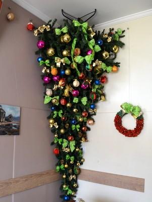 Árvore de 2,4 metros em café em Piracicaba (Foto: Fernanda Zanetti/G1)