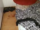 Sogra mata genro com facada no coração em Rafard, diz Polícia Civil