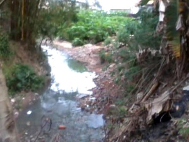 Margens do Córrego Itaim, em Ferraz estão encobertas por vegetação e lixos (Foto: Dennis Henrique Possani Heiderich/ VC no G1)