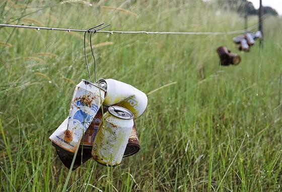 Latinhas de refrigerantes penduradas nas cercas ajudam os elefantes a não cruzar os limites (Foto: © Haroldo Castro/ÉPOCA)