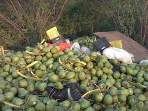 Caminhão carregado com frutas tombou na PE-320 (Foto: Divulgação/ Polícia Militar)