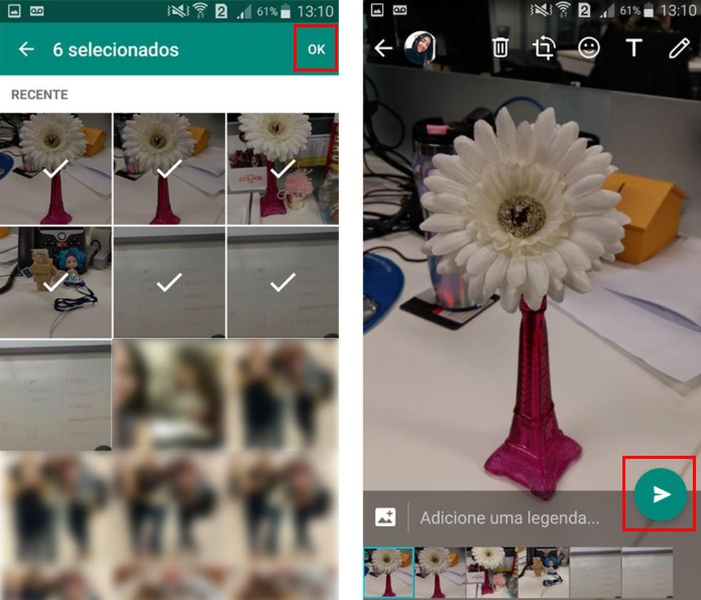 Confirme o envio das imagens no WhatsApp (Foto: Reprodução/Aline Batista)