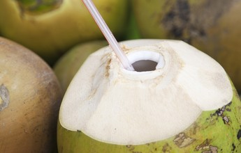 Hidratante e pouco calórica, a água de coco funciona como isotônico natural