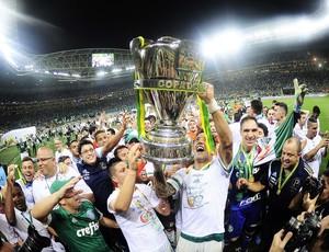 Palmeiras festa título (Foto: Marcos Ribolli)