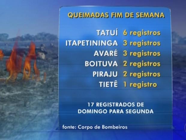 Seis Corpos de Bombeiros da região atenderam 17 queimadas (Foto: Reprodução/ TV TEM)