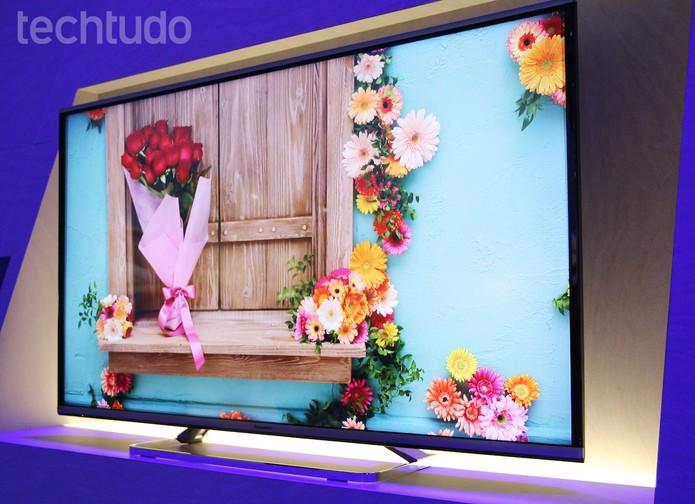 Modelo TX-AX630, da Panasonic, tem resolução 4K (Foto: Fabrício Vitorino/TechTudo)