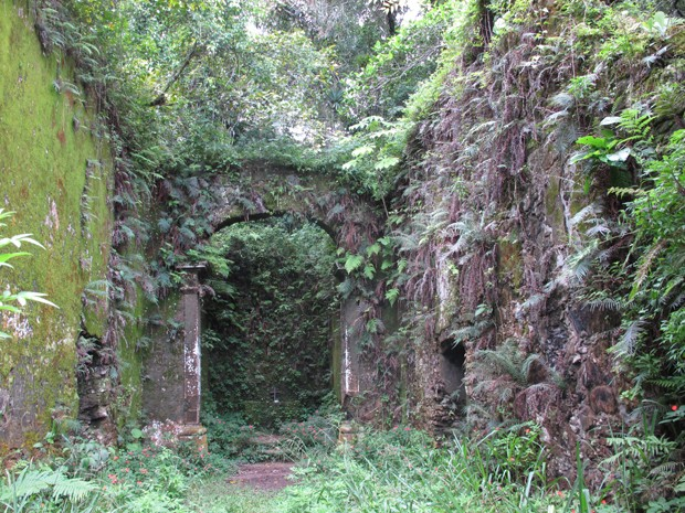 Ruínas da Igreja onde Padre Anchieta catequizava índios no século XVI (Foto: Anna Gabriela Ribeiro/G1)