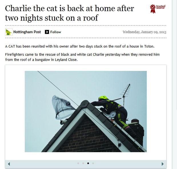 Gato passou dois dias preso no telhado de casa em Toton (Foto: Reprodução)