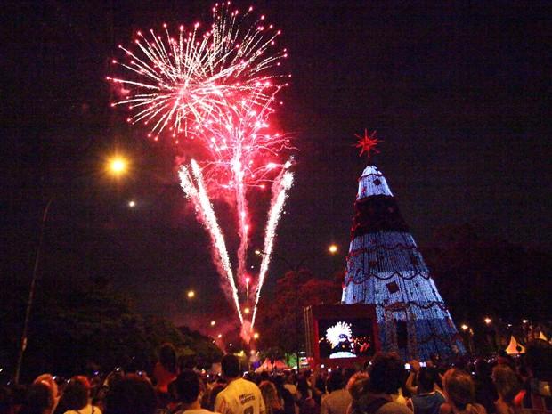 Show de fogos marcou a inauguração da árvore neste domingo (9) (Foto: Renato S. Cerqueira/Futura Press/Estadão Conteúdo)