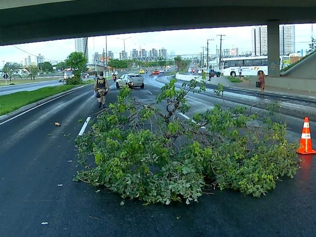 Acidente aconteceu embaixo do viaduto de Ponta Negra, na zona Sul de Natal (Foto: Reprodução/Inter TV Cabugi)