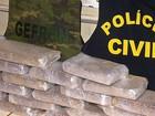 Traficante usa carneiro para disfarçar transporte de 25 kg de droga em MT