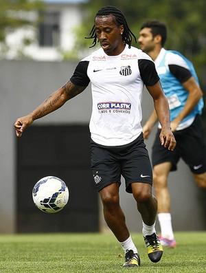 Arouca Santos (Foto: Ricardo Saibun / Divulgação Santos FC)