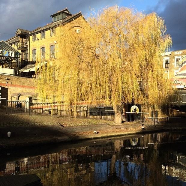 Fatima Bernardes posta foto de Camden Town (Foto: Reprodução/ Instagram)