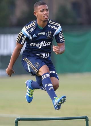 Gabriel Jesus Palmeiras (Foto: César Greco / Ag. Palmeiras / Divulgação)