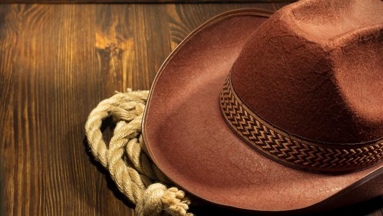 cronica-cowboy-chapeu-corda-madeira-fazendeiro-nó (Foto: Thinkstock)