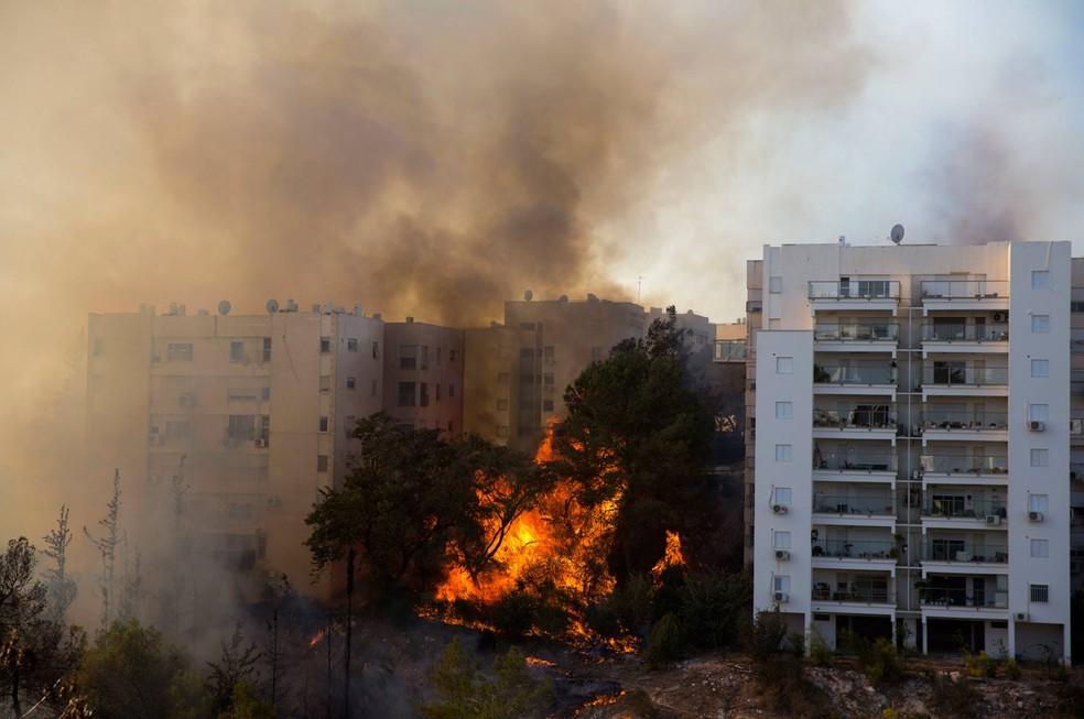 Chamas, de vários metros de altura, destruíram a vegetação nos arredores e ameaçam os imóveis de vários bairros (Foto: Ariel Schalit/AP)