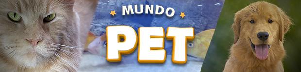 Mundo Pet (Foto: Arte/G1)