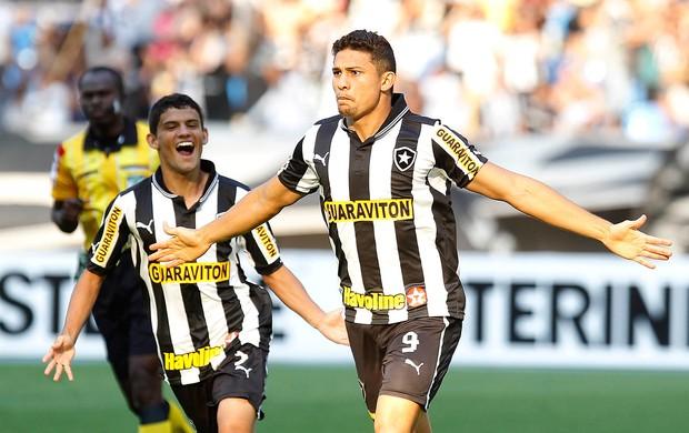 Elkeson gol Botafogo (Foto: Wagner Meier / AGIF)