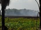 Defesa Civil registra quase 1,3 mil queimadas em novembro no Amapá