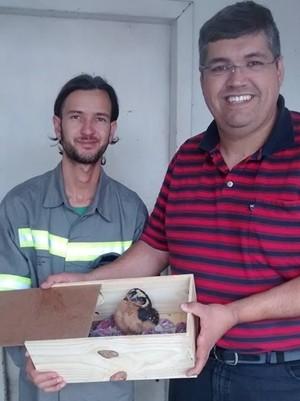 Eletricista contou com ajuda de veterinário de Mogi das Cruzes para resgatar coruja rara (Foto: Roberto da Luz/ arquivo pessoal)