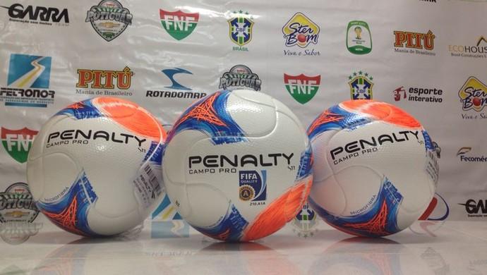 Nova bola do Campeonato Potiguar (Foto: Divulgação/10 Sports)