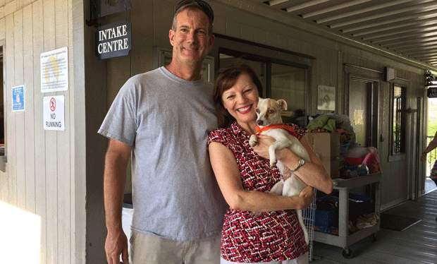 O cãozinho Bubba e sua nova família (Foto: OC Animal Care/Facebook)