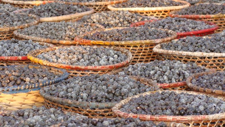 açaí-fruta-brasil-pará-paneiro (Foto: Bruno Blecher/Ed. Globo)