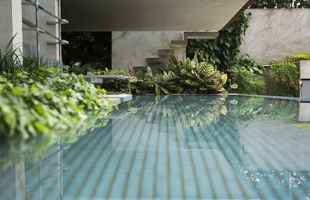 A casa oásis de Gloria Kalil. (Foto: Rafael Avancini)