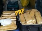 Polícia apreende malas com 43 kg de maconha em ônibus na Fernão Dias